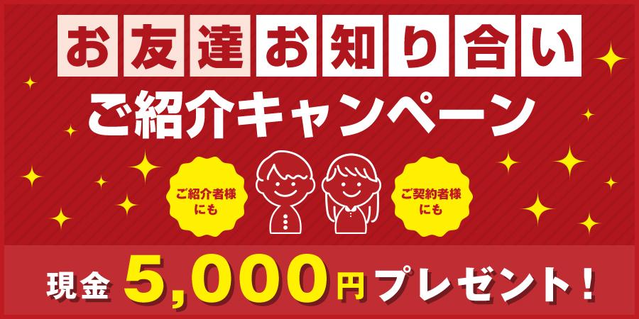 campaign_bnr_pc